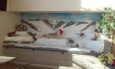 Wolf with Santa's Hat, Hugo morel