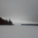 Frozen lake and a bison buger